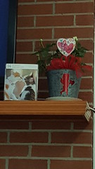 Valentine Mantel (june18bug) Tags: flowers bow february valentine