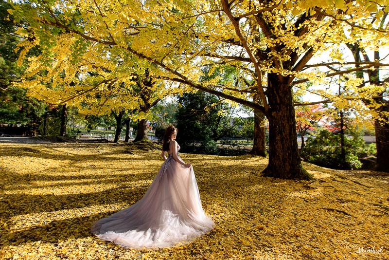 cheri婚紗包套,日本婚紗,京都婚紗,楓葉婚紗,新祕巴洛克,婚攝,海外婚紗,MSC_0063