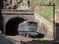 SBB Ae8/14 11801 (maurizio messa) Tags: gottardo gotthard treni trains ticino switzerland svizzera yashicafxd mau bahn ferrovia railway railroad ae814 ae81411801 charter sbbhistoric