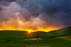 Lone Tree after the Storm (Jaykhuang) Tags: lonetree pond rollinghills eastbay livermore sunset mammatuscloud clouds burn sunstar jayhuangphotography