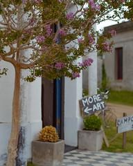 Pueblo Garzón - Maldonado - Uruguay (Irene Carbonell) Tags: maldonado garzón uruguay uruguaynatural fachadas moreart art calles pueblos pueblosconencanto nikon 50mm