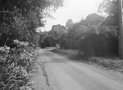 Summerlea Road (photo 2) (Matthew Paul Argall) Tags: belomoetude fixedfocus 120film 120 mediumformat ilfordhp5plus hp5 400isofilm blackandwhite blackandwhitefilm road street summerlearoad