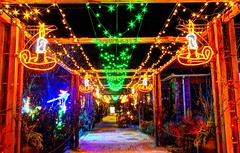 candles and stars (JoelDeluxe) Tags: rol riveroflights abq biopark nm december 2018 albuquerque biological park pnm light display colors lights sculptures fantasy newmexico hdr joeldeluxe