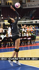 Goddard 2 (GuardTheZia) Tags: new newmexico nmaa state volleyball championships 2019 blue trophy bump set spike santa ana