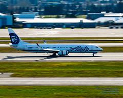 737-900ER Slowing Down at PDX (AvgeekJoe) Tags: iflyalaska 737 737900 737900er 737990er alaskaair alaskaairlines boeing737 boeing737900 boeing737900er boeing737990er d5300 dslr internationalairport kpdx n477as nikon nikond5300 pdx portlandairport portlandinternationalairport aircraft airplane airport aviation jetliner panning plane