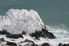 Coastline, Ice, ocean, rock , Cape Spear (frank.king2014) Tags: ocean rock coastline ice divisionno1 newfoundlandandlabrador canada ca