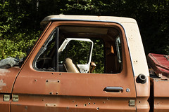 Pickup (Curtis Gregory Perry) Tags: ketchikan alaska ford pickup abandoned truck bullet hole cab window door damage vandalism rust broken glass nikon vehicle old classic 1975 1974 1973 1976 d810