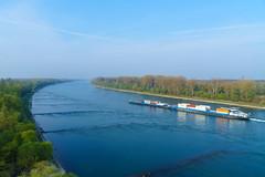 Der Rhein (KaAuenwasser) Tags: rhein fluss strom wasser gewässer schiff schifffahrt frachter verkehr weg wasserstrase karlsruhe wald rheinaue himmel landschaft