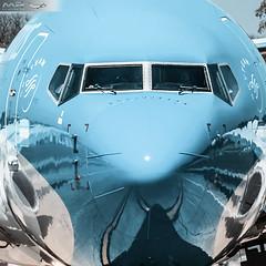 LV-CXS (M.R. Aviation Photography) Tags: boeing 73781dwl lvcxs aerolineas argentinas max aviation aviacion airplane plane aircraft avion sony a7 a6 z7 d850 d750 d650 d7200 photo photography foto fotografia pic picture canon eos pentax sigma nikon b737 b747 b777 b787 a320 a330 a340 a380