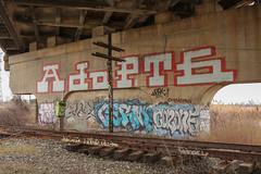 Adopt6, Sape, Coe, Cerm, Coz (NJphotograffer) Tags: graffiti graff new jersey nj trackside rail railroad bridge adopt6 adopt 6 roller sape4 sape 4 2wcrew 2w crew tfp coe3 coe 3 cerm izm coz cozone