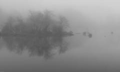 Misty Morning on the Pond (marvhimmel) Tags: pond morning general oregon mist fog bw hwy126 florence pinnk