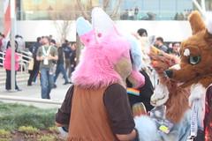 IMG_8962 (South Kitsune) Tags: fursuit furries furcon costumes cosplays caliur furry fandom