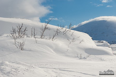 Norway and Sweden Border (kevin-palmer) Tags: norway arctic march winter snow snowy cold morning clouds scandinavianmountains riksgränsen skiresort sweden border nikond750 tamron2470mmf28 trees blue sky sunny