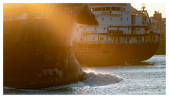Like ships passing in the sunset (leo.roos) Tags: sunset zonsondergang maassluis nieuwewaterweg ship trudy a7iii sonyfe100400mmf4556gmoss sel100400gm sonyfe1004004556 darosa leoroos