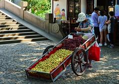Jiading - Fresh fruit, anyone? (cnmark) Tags: china shanghai jiading district town old street vendor fruit seller grapes wheelbarrow schubkarre früchte scenic area 中国 上海 嘉定区 南大街 ©allrightsreserved