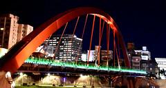 Bridge Arch (earthdog) Tags: 2018 nikon d5600 nikond5600 18300mmf3563 bridge travel businesstravel sky city taipei taiwan night skyline architecture light lowlight building rainbowbridge
