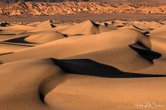_6HB91419157 (Hilary Bralove) Tags: landscape nikon sunset mesquitesanddunes dunes deathvalley california deathvalleynationalpark