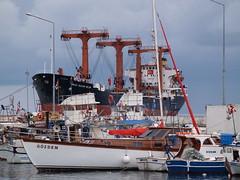 Sinop harbour, Black Sea, Turkey (with general cargo vessel 'Yavuz Sultan Selim' dominating the background) (Steve Hobson) Tags: sinop black sea turkey ship yavuz sultan selim