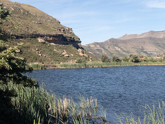 Clarens Conservancy Kloof Dam, SA (ClarensTourismForum) Tags: countrycottage rosewoodcorner clarenskloofdam hikingtrails accommodation petfriendly cottage clarensaccommodation hikesinclarens southafrica clarensconservancy explore clarens holiday selfcatering freestate za