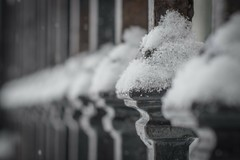 Snow Capped I ... (vanessa violet) Tags: winter snowcapped snow happyfencefriday fencefriday hff fence