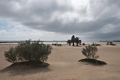 Paysage minimal#8 (alain leveque) Tags: puerto spain andalousie espagne cadiz cadix andalucia