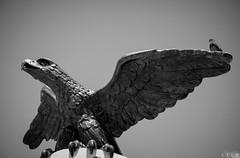 Re-upped (proud of but not seen) (LTL78) Tags: nx300 samsung escultura monumento méxico mérida yucatán eagle águila dove paloma