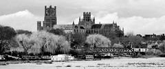 Ely Cathedral (damhphotography) Tags: ely cathedral monochrome frosty blackandwhite