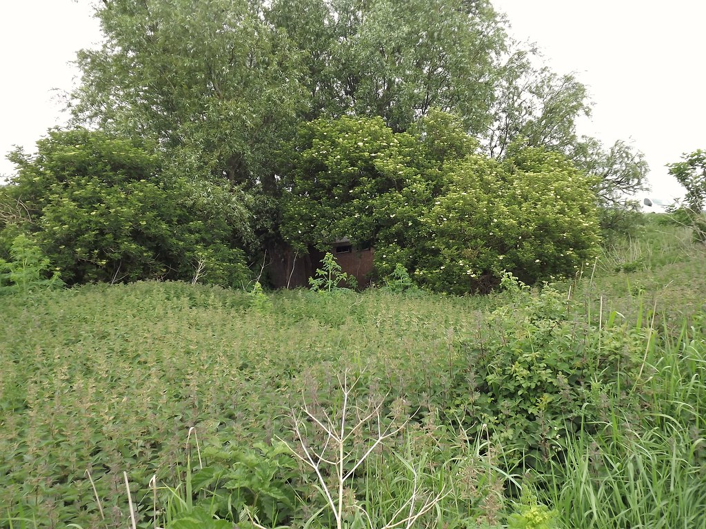 > WWII Home Guard Storehouse, Mortons Bridge, Outwell [TF-5394 0475]