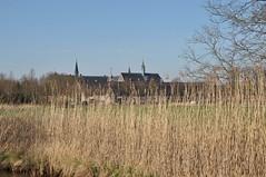 2019 België 0047 Achel (porochelt) Tags: achel belgië b limburg belgium belgien belgique bélgica
