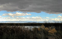 Cloud Cover (Patricia Henschen) Tags: colorado rural countryside country sanluisvalley alamosanationalwildliferefuge nationalwildliferefuge alamosacolorado alamosa backroads backroad mountains mountain sangredecristo range bloodofchrist cloud clouds storm wetland
