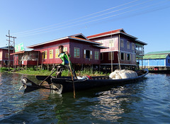Skillful boat driver on Inle Lake, Myanmar (Claire Backhouse) Tags: myanmar burma burmese water river lake lakehouse stilthouse waterliving floatinghouse floatingvillage floating boat house aquatic bluesky life living motorboat