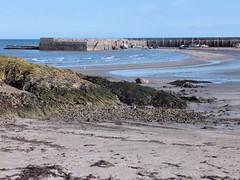 Ballywalter Harbour (John D McDonald) Tags: ballywalter harbour ballywalterharbour coast coastal ards ardspeninsula countydown codown down eastdown northernireland ni ulster geotagged beach ballywalterbeach rocks sea