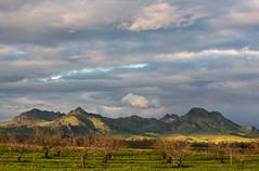 Sutter Buttes, Colusa Sky (Dan Brekke) Tags: sutterbuttes suttercounty colusacounty sacramentovalley northerncalifornia centralvalley