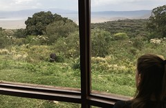 Ngorongoro Sopa Lodge Room View (Everyday Glory!!!) Tags: ngorongorocrater ngorongoro africa tanzania wildlife gamedrive safari lakemagadi africanbuffalo buffalo capebuffalo kristen