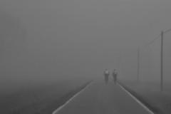 ciclonebbia (mat56.) Tags: paesaggi paesaggio landscape landscapes pianura padana ciclisti cyclists due two nebbia fog misty lombardia lodi lodigiano pantigliate livraga strada road bianco black nero white antonio romei mat56