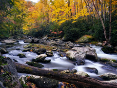 The Great Smoky Mountains never disappoint (Christopher W Gilbert) Tags: longexposure fujifilm fuji gfx50s fall fallcolors water river landscape landscapes smokeymountains