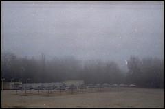 655 (konophotography) Tags: konophotography konophoto film filmisnotdead filmphotography analog analogue nature ukraine home morning fog foggy buyfilmnotmegapixels ishootfilm 2018