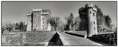 Château Dauphin (au35) Tags: châteaudauphin chateau auvergne castle nb panorama d5000 nikon