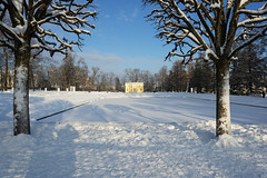 Winter landscap (fedoseenko) Tags: санктпетербург россия красота colour природа beauty blissful loveliness beautiful saintpetersburg sunny art shine dazzling light russia day park peace blue white голубой небо лазурный color sky pretty sun пейзаж landscape clouds view heaven mood serene colours picture road tree nature alley history trees walkway field outdoors old d800 wood path catherine town winter snow cloud снег тропинка деревья облака аллея freeze frost frosty tsar 24120mmf3556d здание архитектура building architecture catherinepalace catherinepark lake