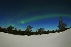 (lovisaluscinia) Tags: lapland northernlights auroraborealis finland flickr arcticcircle sigma fisheye canon canonphotography