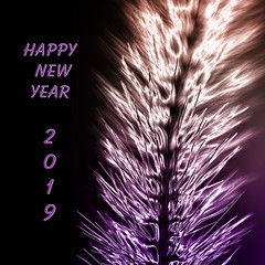 Welcome 2019 !!! (AnyMotion) Tags: welcome2019 firework feuerwerk happynewyear prostneujahr plants pflanzen seedhead samenstand light licht bokeh garden garten frankfurt 2017 anymotion macro makro natur blumen floral flowers photoshopped 7d2 canoneos7dmarkii makroaufnahmen