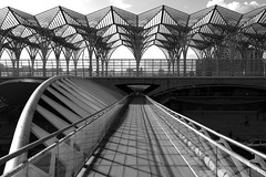 Gare do Oriente (Douguerreotype) Tags: lisbon bridge geometric blackandwhite monochrome lisboa buildings train mono geometry city portugal architecture urban bw station