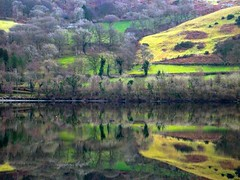 Reflections (Defabled) Tags: reflections balalake gwynedd