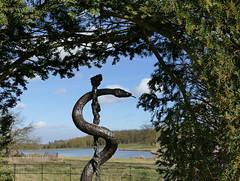Raveningham Hall, Norfolk, UK (mira66) Tags: rod herb garden raveningham hall park norfolk eastanglia asclepius gwuk serpent lake