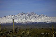 4 Peaks covered (littlebiddle) Tags: allofarizonaphotography arizona tontonationalforest