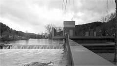 16.03.2018 - 10:15 Uhr Neckarpegel in Horb 2,81 Meter fallend - (HOR-BS 696) Tags: berndsontheimer badenwürttemberg horbamneckar hochwasser neckar