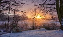 Winter time in Norway (Vest der ute) Tags: xt2 norway rogaland haugesund water waterscape landscape sky sunrise winter snow trees tree earlymorning fav25 fav200
