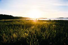 2016013_11 (lawa) Tags: 2016 july nordkoster reservatet camping kosteröarna bohuslän sweden sunset sea