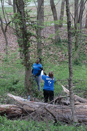 """Caleres helps to clean up Forest Park • <a style=""""font-size:0.8em;"""" href=""""http://www.flickr.com/photos/45709694@N06/33716929998/"""" target=""""_blank"""">View on Flickr</a>"""