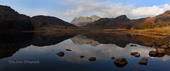 Tranquil: Blea Tarn and the Langdales. (trev.eales) Tags: bleatarn langdalepikes langdales langdale tarn mountains sidepike harrisonstickle pikeofstickle loftcrag reflections reflected fell sunlight water waterscape landscape lakedistrict lake nationalpark cumbria nikon treveales
